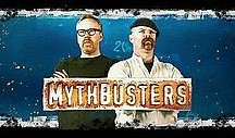 Co-hosts of the Discovery Channel's Mythbusters: Adam Savage and Jamie Hyneman