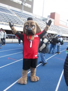 Ralph is the mascot for the Calgary Stampeders; Image by Joyce Grant.