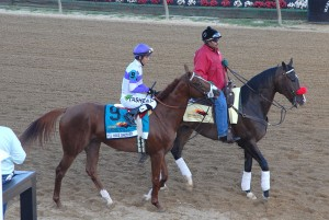 I'll Have Another and Lava Man at the 2012 Preakness Stakes