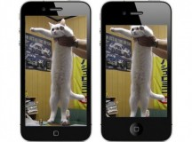 iphone5-cat