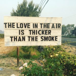 """Sign that says """"The Love int he air is thicker than the smoke"""" in California. Photo by Cline Cellars winery."""